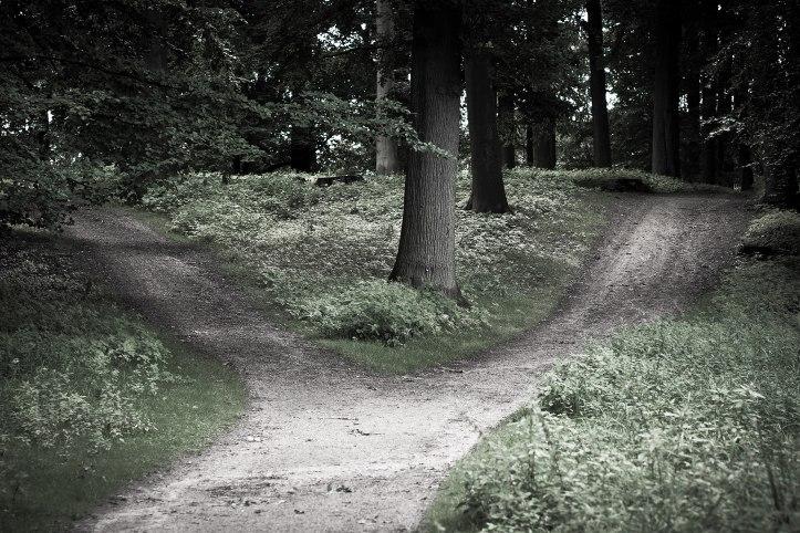 Flickr_-_Laenulfean_-_crossroads